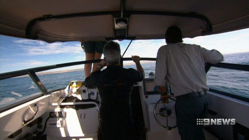 WA scientist Brad Norman and his team are studying whale sharks using NASA technology. (9NEWS)