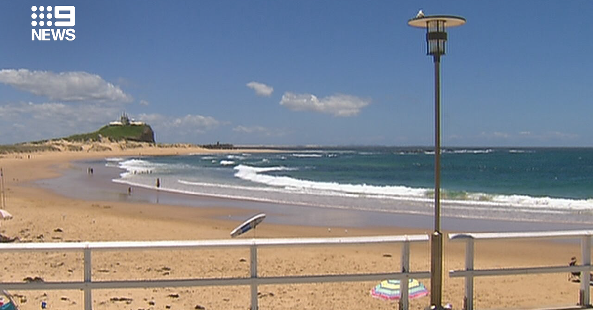Newcastle beaches closed after multiple shark sightings – 9News