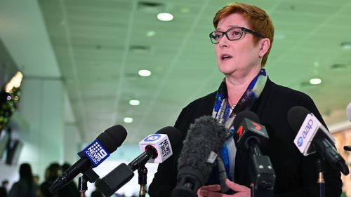 Australian Foreign Minister Senator Marise Payne addresses the media at Sydney International Airport.