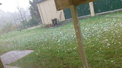Hail hits Forestdale. (Supplied, Koji Takagi)
