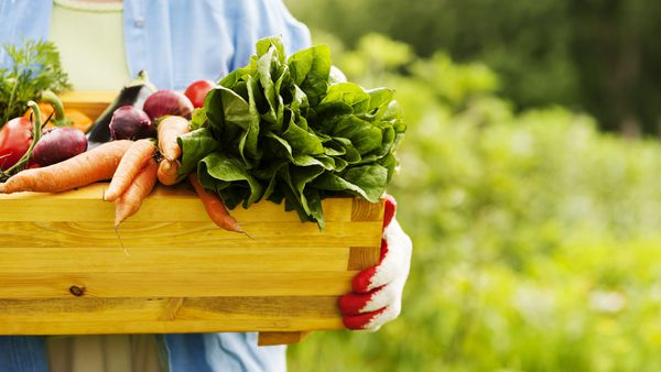 People who eat organic 25 per cent less likely to get cancer