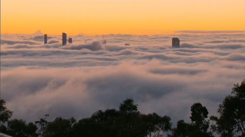 Heavy fog has caused flight delays and heavy traffic in Brisbane. (9NEWS)
