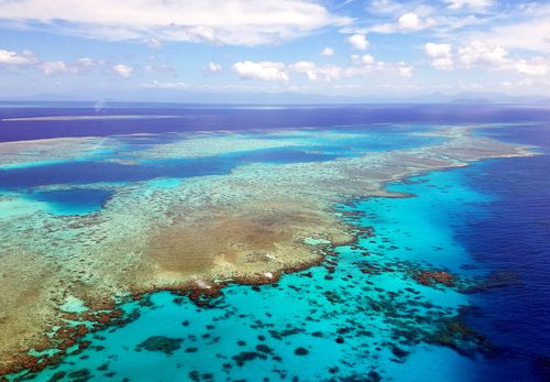The government is set to spend almost half a billion dollars to rescue the Great Barrier Reef. (AAP)