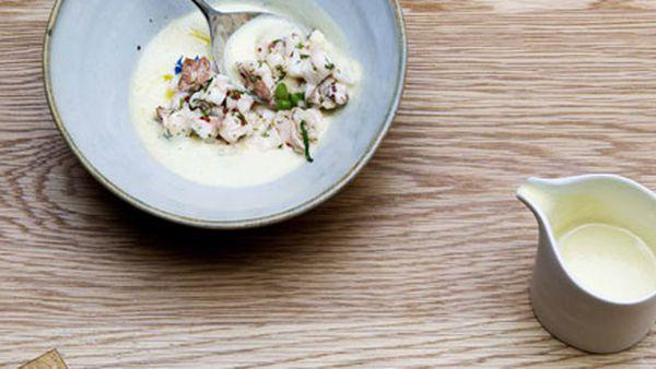 Cucumber and yoghurt soup with Moreton Bay bug salad