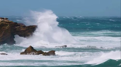 Wind gusts of up to 125km/h in parts across the south-east have been predicted.