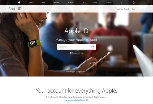 The fake Apple login page