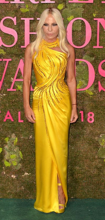 """<p>Designer Donatella Versace stunned in a floor-length gold number. The fashion icon went home with an award from the ceremony which was presented to her by Cindy Crawford.</p> <p>""""I know it might sound obvious but we are running out of time to save our planet. If everyone did a little something to contribute, things would improve dramatically,"""" the Italian designer said in her acceptance speech.</p>"""