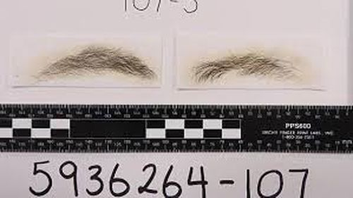 The waxed eyebrows were presented as evidence in Sarah Budge's trial.