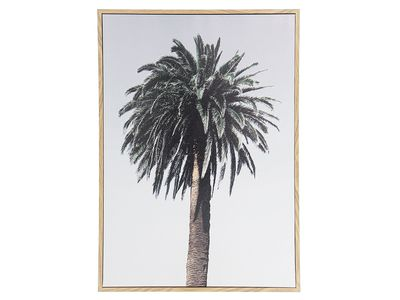 Palm Framed Canvas — Kmart