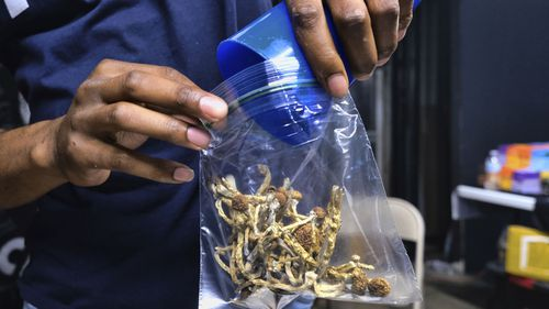 Voters in Oregon will decide on a measure that would legalise therapeutic, regulated use of psilocybin mushrooms.
