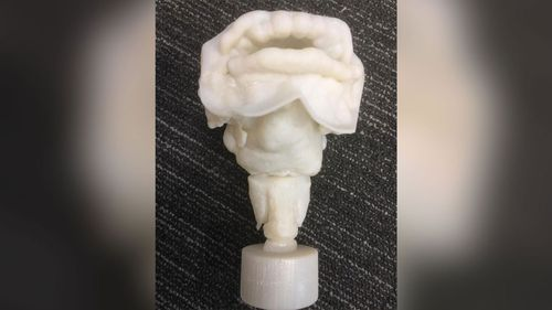 3-D printed vocal tract of Nesyamun.
