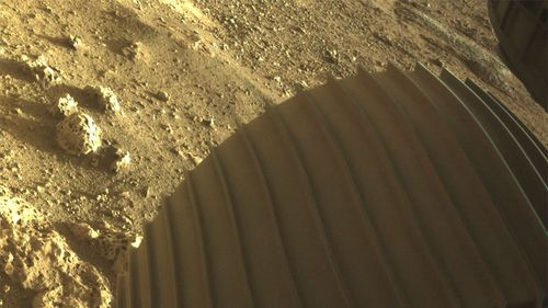 One of the six wheels on the Perseverance Mars rover.