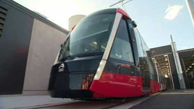 'Insane and incompetent': Light rail under scrutiny