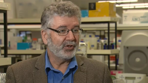 Professor Nigel McMillan has said the drug can nearly remove all COVID cells from a recipient's lungs.