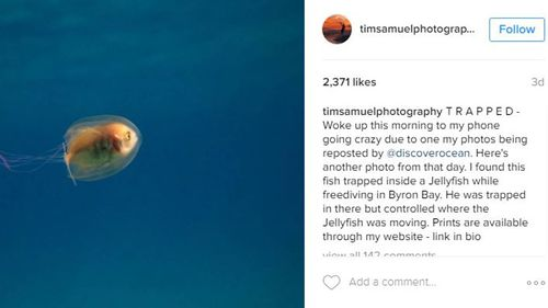 """Mr Samuel said he was """"blown away"""" by the attention the photographs are receiving. (Tim Samuel Photography)"""