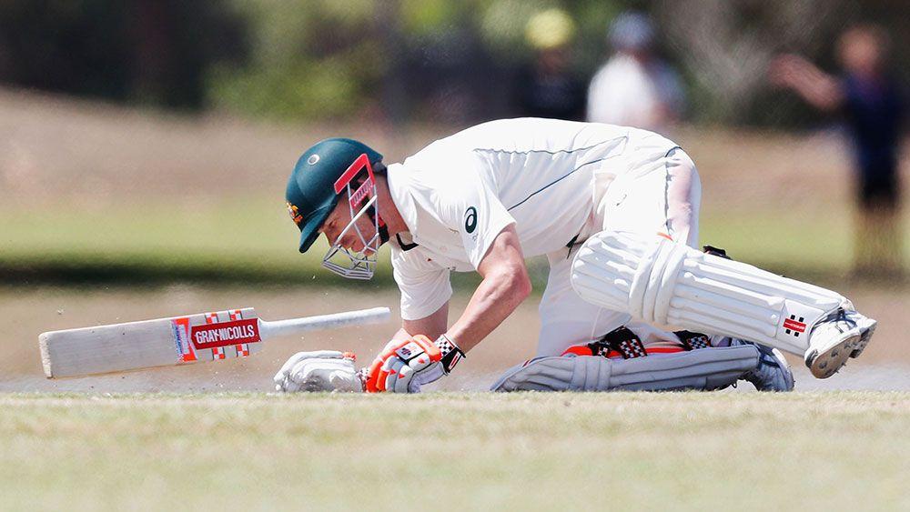 Australia batsman David Warner passes concussion test after blow