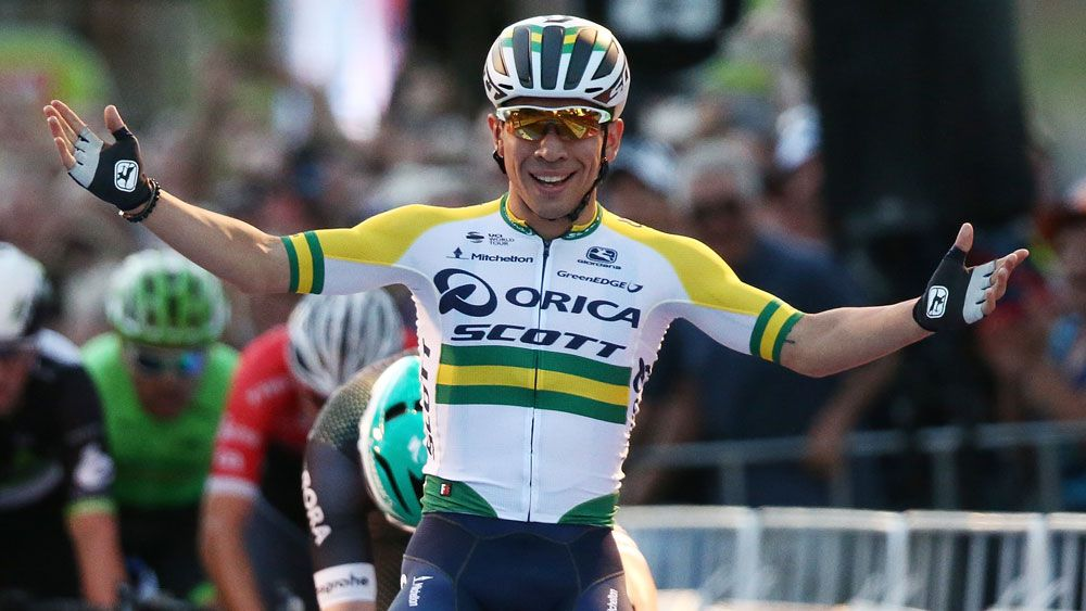 Tour Down Under star Caleb Ewan thriving in cycling's danger zone