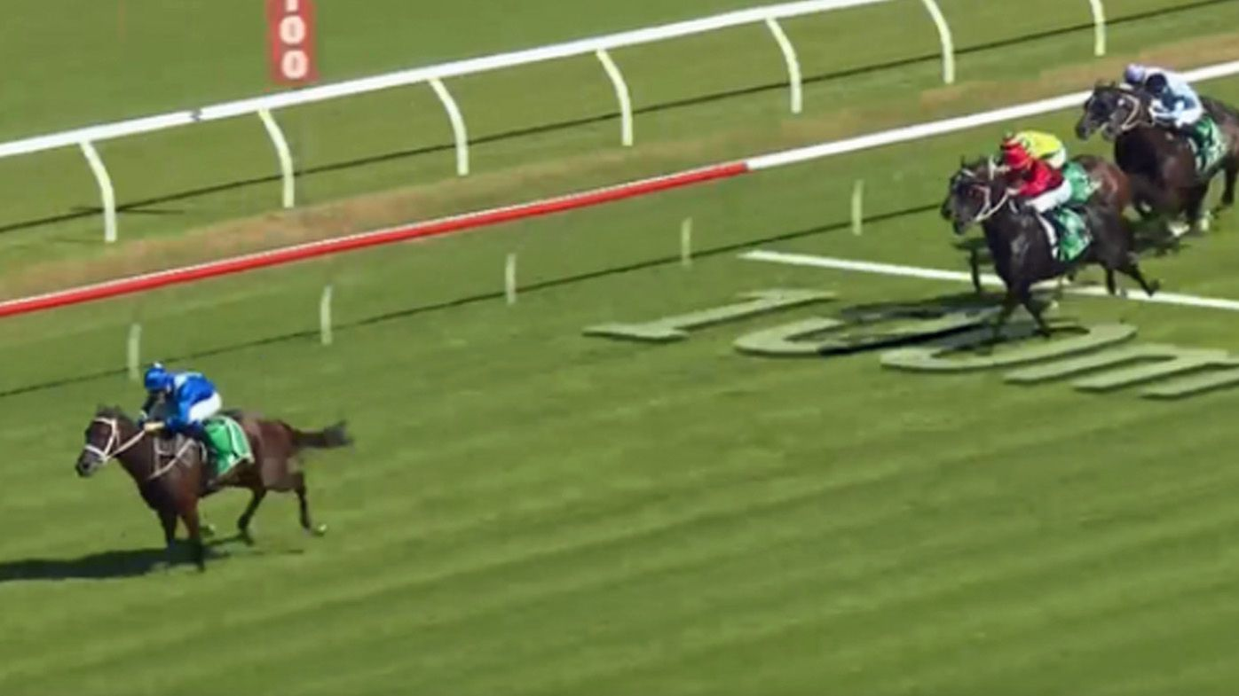 Winx makes history with 16th Group One victory at Chipping Norton Stakes at Randwick