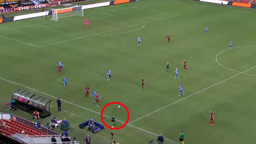 A-League fourth official Lara Lee cops savage ball to face during Sydney FC win over Brisbane Roar
