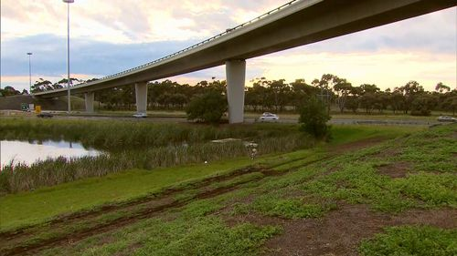 The car plunged down an embankment and into the wetlands below.