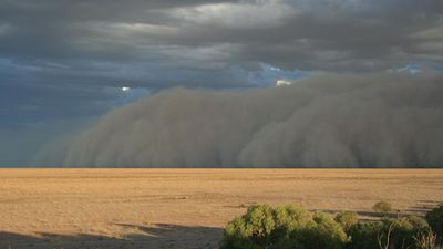 The dust storm lasted around 90 minutes. (Supplied, Maggie den Ronden)