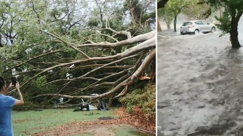 Queensland residents assess the damage after wild storms lash parts of the state.