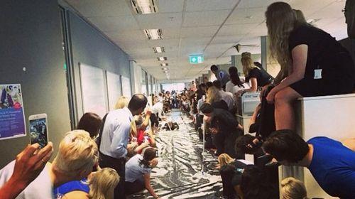 Brisbane company behind office Slip 'n Slide