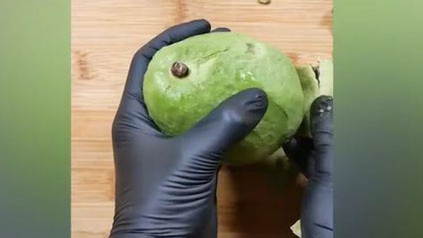 The whole avocado Tiktok viewed 17 million times