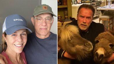 Celebrities, coronavirus, lockdown, isolation, Tom Hanks, Rita Wilson, Arnold Schwarzenegger