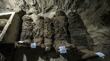 Mummies lying in catacombs following their discovery in the Touna el-Gabal district of the Minya province. (AFP)
