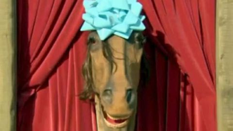 Worst dating show ever: Talking horse sets up singles