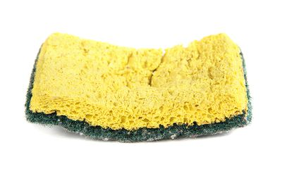 2. Using dirty sponges