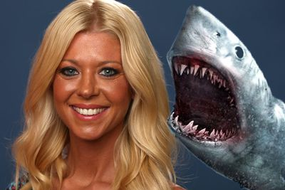 """The <i>Sharknado: The Second One</i> star told <i>GQ</i> magazine: """"You know, it actually can happen. I mean, the chances of it happening are very rare, but it can happen actually. Which is crazy. Not that it - the chances of it are, like, you know, it's like probably 'pigs could fly'. Like, I don't think pigs could fly, but actually sharks could be stuck in tornados. There could be a sharknado.""""<br/><br/>Scroll for more of the dumbest celeb quotes!"""