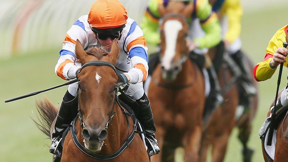 Aspect saluted in the Maribyrnong Plate at Flemington. (Getty Images)
