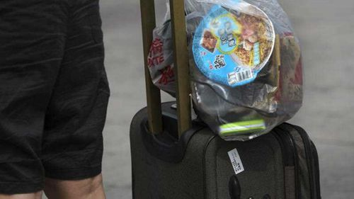 UPDATE: Police come clean over bungle that left a bomb in Sydney woman's suitcase