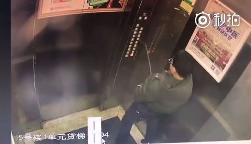 The boy was caught on CCTV urinating on the lift control panels. (Supplied)