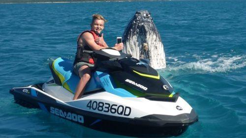 Mr Poland with the whale. (Whitsunday Jetski Tours)