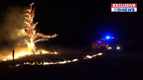 Many residents sought shelter in relief centres from the bushfires. (9NEWS)