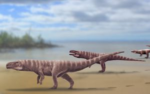 Ancient crocodiles used to walk on two legs like dinosaurs, study finds