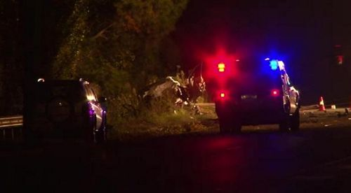 A P-plater died after her car hit a tree near Mittagong. (9NEWS)