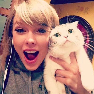 6. Surprise! It's Taylor Swift and her cat Meredith. Likes: 2.4 million. Comments: 54k.