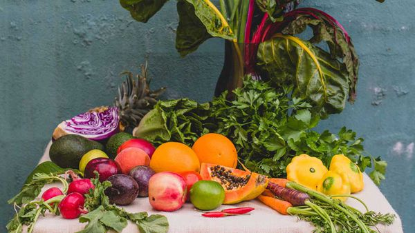 Ovvio Organics summer vegetables