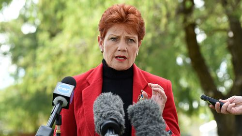 One Nation to stand in all Queensland seats