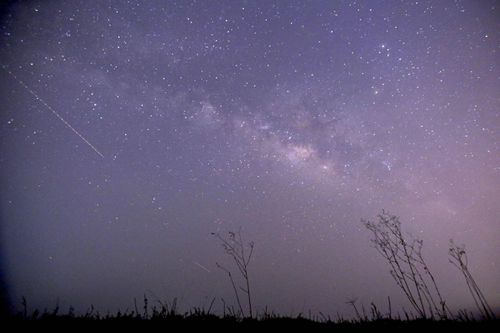 The Lyrid meteor shower will present a night skywatching show from April 22-23.
