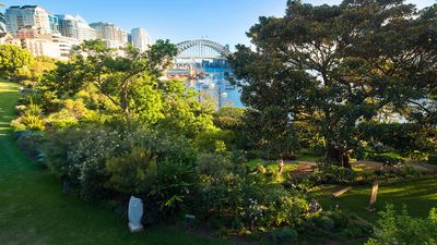 Wendy Whiteley's Secret Garden, Lavender Bay