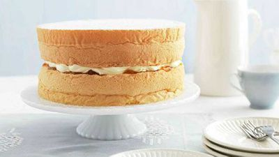 "10.) <a href=""Featherlight sponge cake"" target=""_top"">Featherlight sponge cake</a>"