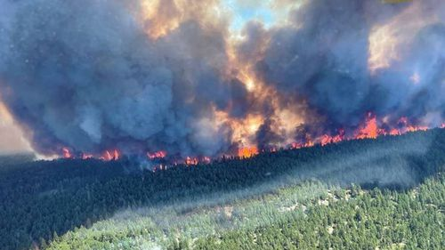 The Sparks Lake forest fire which NSW RFS Captain Chelsea Vargas is helping with in British Columbia.