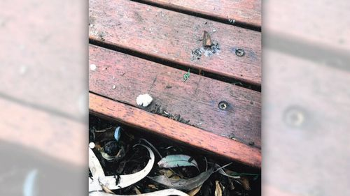 A neighbour complained about the mess the birds left on their deck.