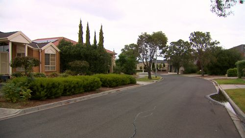 The trio entered Xiaoping's Cairlea home in Melbourne's west last year and covered her in a doona before ransacking her house. Picture: 9NEWS.