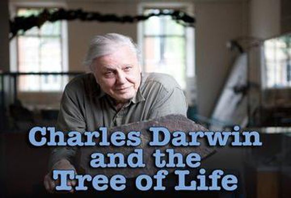 Charles Darwin and the Tree of Life
